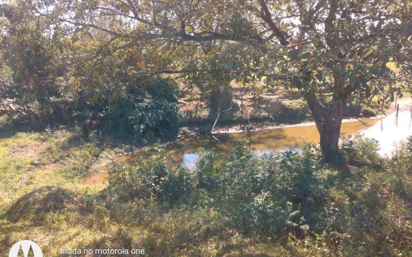 Sitio de 8 alqueires com casa, granja, mangueira, tanque, nascente.