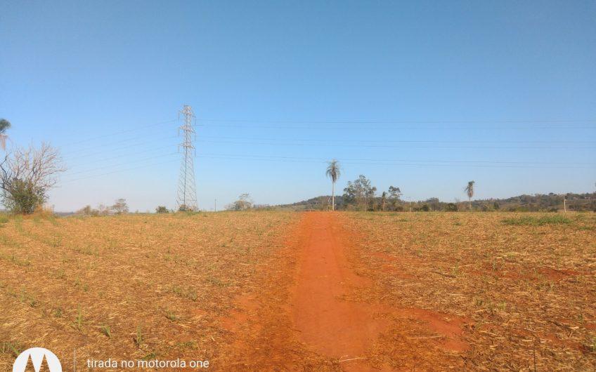 Sitio de 21 alqueires, terra vermelha- proximo a rodovia
