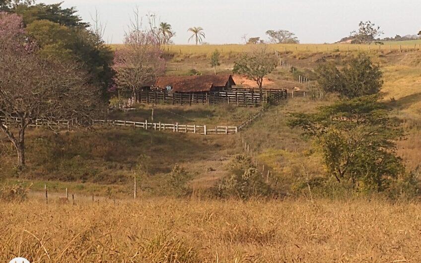 Sitio com 8,5 alqueires, 70% plano, com casa, mangueira, barracão.